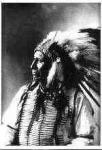 101 American Horse, Wasechum Tashunca, Oglala Sioux Chief