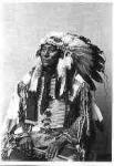 "132 Hollow Horn Bear, Mato HeHlogeco"", Brulé Sioux Chief"""