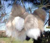 Fell-Schlüsselanhänger Gr. 06, Waschbär oder Fuchs L. ca. 13-18