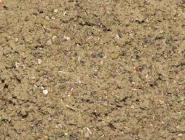 Indianischer Kräutertabak Kinnick Kinnick 30 gr.