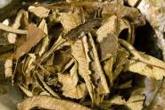 Yerba Santa Leaf 20 gr. - Yerba Santa Blätter