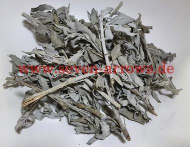 White Sage Leaf 1/2 LB - Weiße Salbei Blätter Großpackung