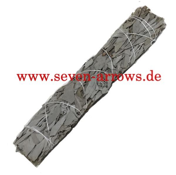 White Sage - Weisser Salbei - 1. Wahl Gr. XL