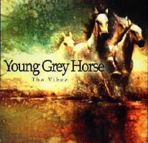 Young Grey Horse-Tha Vibez